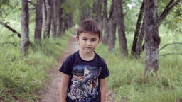 Portrait. A happy beautiful little boy walking in the park on a summer sunny day Footage