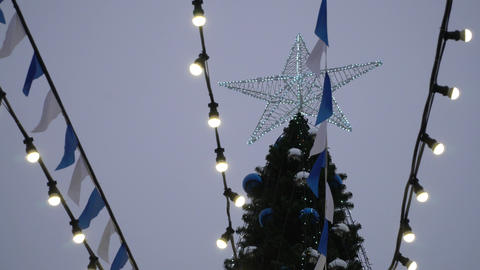 View of the main Christmas tree of the city ビデオ