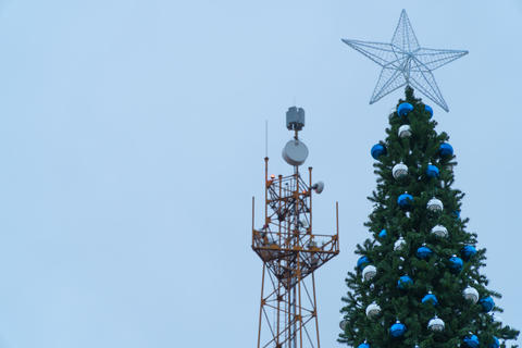 Main tree of the city on the background the tower of the base station Photo