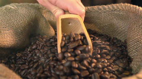 Video of scooping coffee beans in real slow motion Live Action
