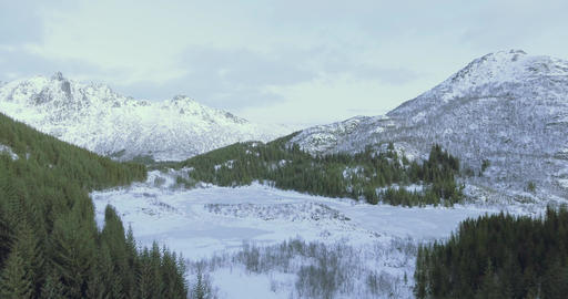 Winter landscape with mountain snow and pine trees in Norway lofoten Footage