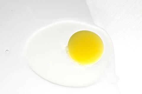 sprouting egg, yolk and protein on a white background Fotografía