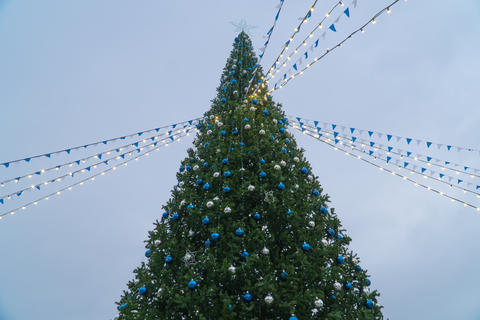 View of the main Christmas tree of the city フォト