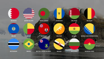 260 Country Flags Animations After Effects Template