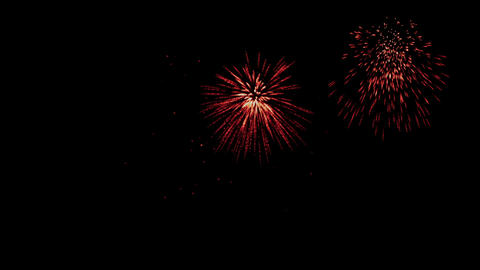 Colorful fireworks at holiday night, celebration, seamless loop Animation