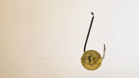 Golden Bitcoin Real Model on Large Fishing Hook Closeup Footage