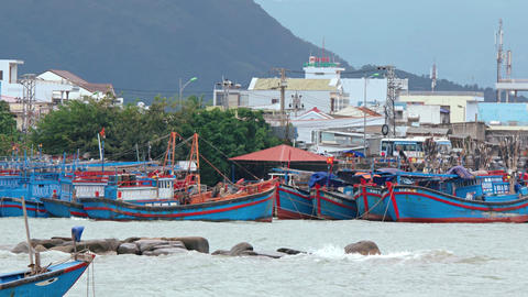 Many fishing vessels. moored at the harbor in Nha Trang Footage