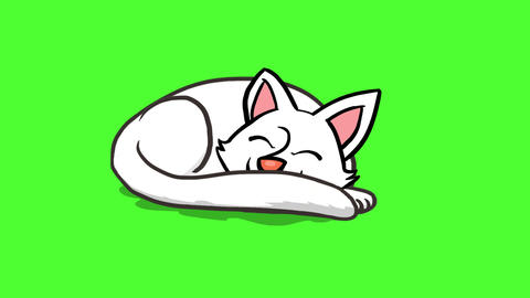 Sleeping cat Animation