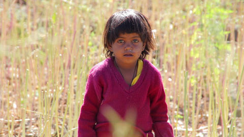 Indian rural child in the field Footage