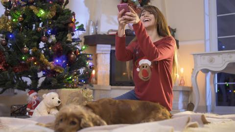 Beautiful girl photographs her dog near Christmas tree Footage