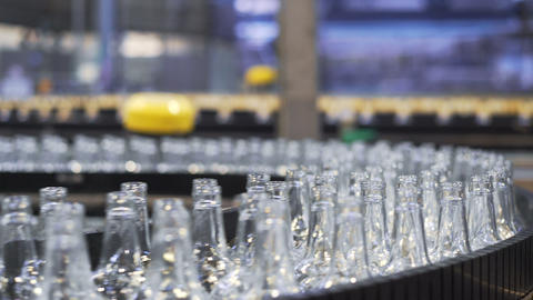 Spill in glass bottles at the plant. Conveyor belt with beer bottles Footage