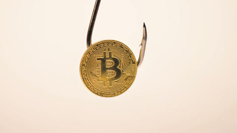 Brilliant Bitcoin Rotates on Fishing Hook against Wall Macro Footage