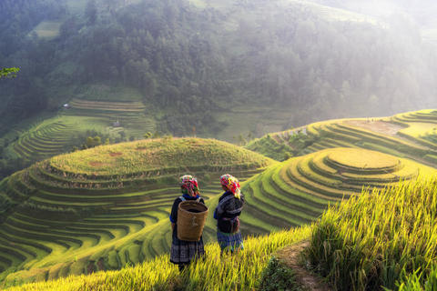 Terraced rice field landscape of Mu Cang Chai, Yenbai, Northern Photo
