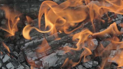 Bonfire flames closeup GIF