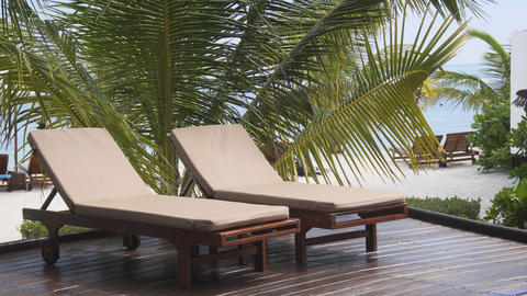 Deck Chairs and Palm Trees at a Tropical Beach Paradise Footage
