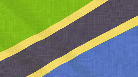 tanzania flag waving in the wind. Icon in the frame. Animation loop Bild