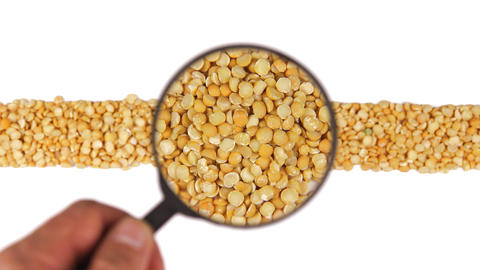 Magnifying glass increases the peas grains Footage
