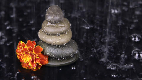 Rock cairn and flower under the rain, side view Footage