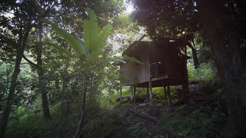 House on Stilts for Farm Workers on Rubber Plantation. with Sound Footage