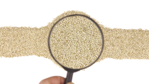 Magnifying glass increases the sesame seeds Live Action