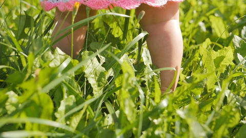 Little baby learns to walk. Slow Motion. First steps on a green grass in summer Footage