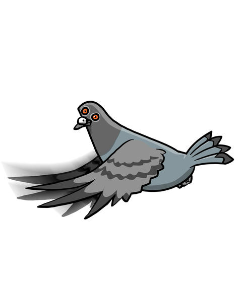 Pidgeon flying cycle Animation