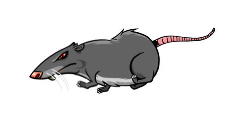 Rat Run cycle Animation