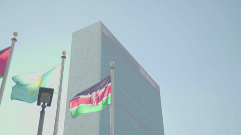 Many flags and the UN building NEW YORK Footage