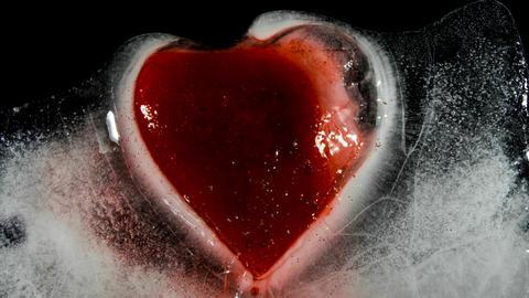 Red heart in ice melting bleeding 00228 フォト