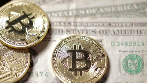 Pan across Bitcoins on dollar background focus Image