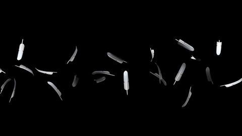 White Feathers On Black Background 動画素材, ムービー映像素材