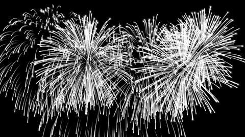 Beautiful cg fireworks in celebration day, alpha CG動画素材
