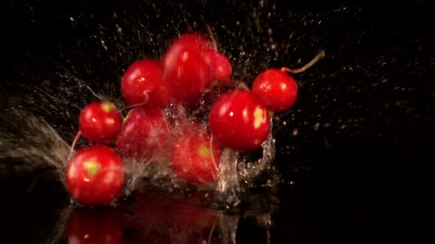 Video of falling radish in real slow motion Archivo