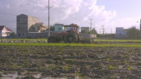 Tractor Moves on Field Past Village Birds Flock Pecks Seed 画像