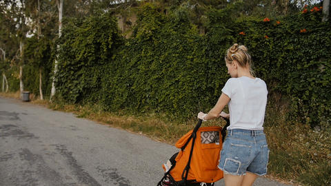 Beautiful young woman walking with her little daughter and pushing stroller in Image