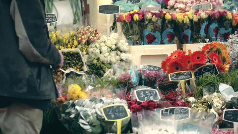Unknown flower vendor in Amsterdam, Netherlands Footage