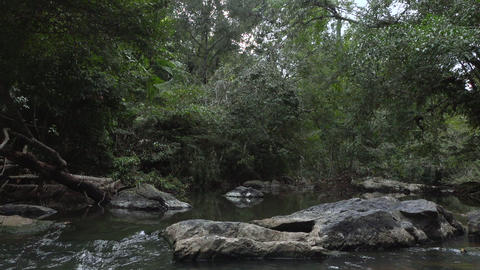 slow motion video of a mountain river in in the jungle of Footage