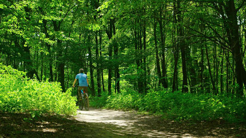 Man takes a walk in the woods on a bicycle Footage