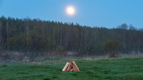 Bonfire flares up in the field against the backdrop of the forest. Time Lapse Footage