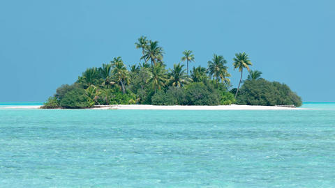 Exotic. Tropical Island Paradise of Mahaanaelhihuraa. Maldives GIF