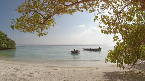 Motorized Dinghies Tied on Mahaanaelhihuraa Island. Maldives Footage
