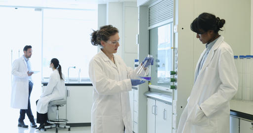 Two female scientists discussing results of experiment Footage