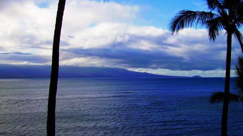 Hawaii 영상물