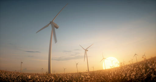 Eco wind energy windmill farm turbines among flowers in sunset light ビデオ