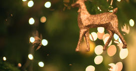 4K abstract christmas tree bokeh alternate tracking shot of christmas tree ビデオ