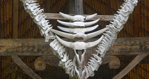 Jaw Bone Decorations on a Traditional Sulawesi House Footage