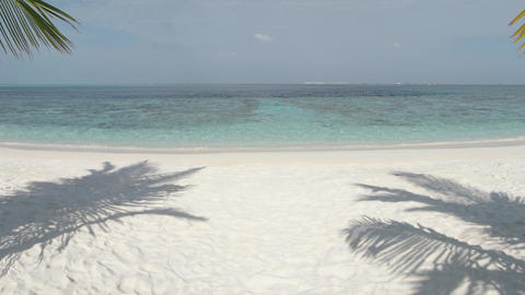 Clear Blue Waters at tropical Beach Paradise in the Maldives Live Action