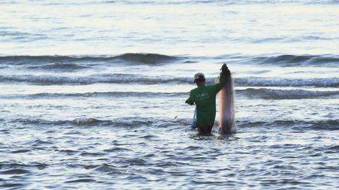 Phuket fisherman collecting his nets on Kamala Beach. UHD 4k video Footage