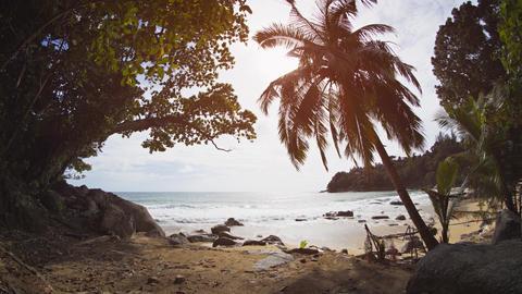 Tropical Island Paradise of Phuket. Thailand. with Sound Footage