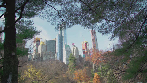 Manhattan view from Central Park through the trees NYC Image